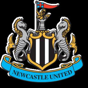 sports_england_newcastle-united-football-club